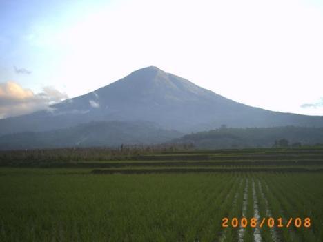 Gunung Cikuray dan sawah yang menghijau. Seperti inilah lingkungan di sekitar pondok pesantren Rancabango