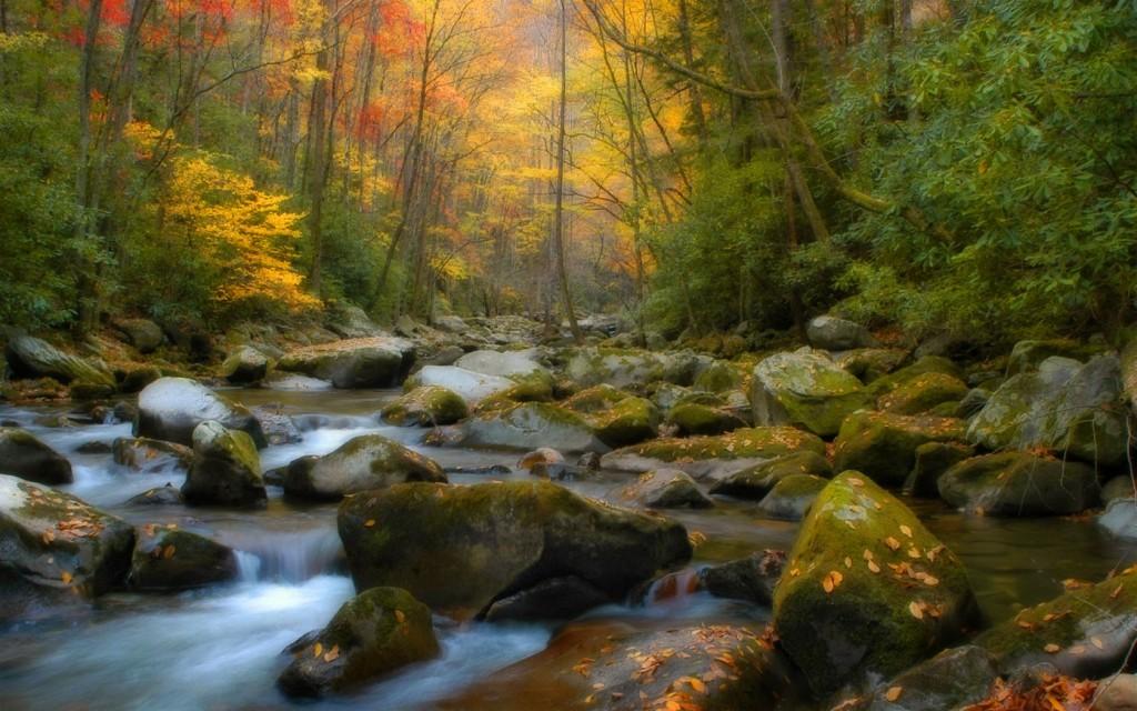 Foto pemandangan alam yang indah