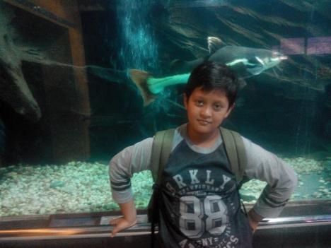 TMII Irfan Ikan Air Tawar